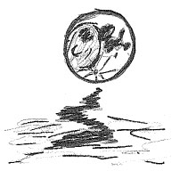 Full moon 9/12/11
