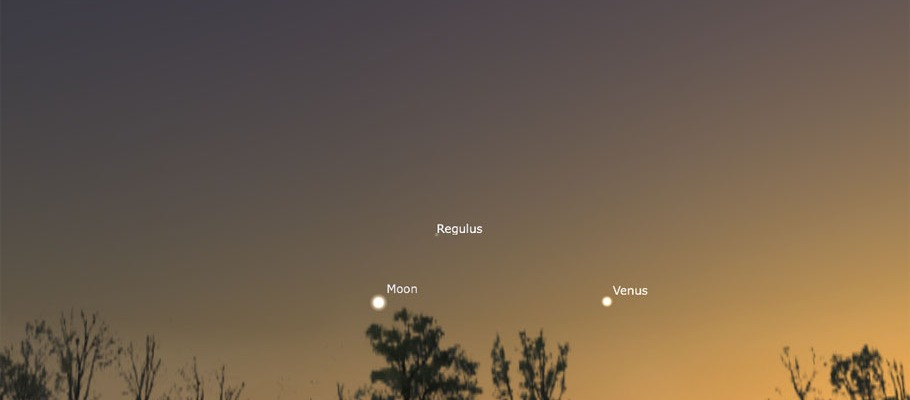 Moon, Venus, and Regulus